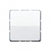 Jung CD 500 Taster mit Schließfunktion (531U + CD 590 WW)